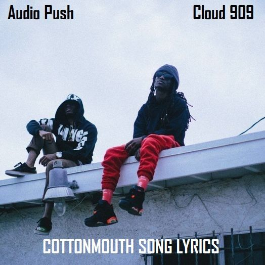 Description:- Cottonmouth Song Lyrics are provided in this article. Cottonmouth Song is the new upcoming english song. Good Vibe Tribe is the music label under which is Sung by Famous American hip hop Singer Group Audio Push. Which the song is releasing on 9 February 2018. Cloud 909 is the latest album of Audio Push. Genre of this album is Hip-hop/rap. Producers of this album is PriceTag & VNSN.