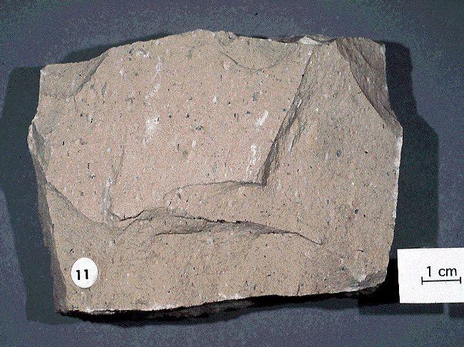 RIOLITA Roca volcánica de composición similar al granito. El feldespato alcalino es más abundante que las plagioclasas  Al aumentar las plagioclasas se pasa a una riodacita y al disminuir el cuarzo se convierte en una traquita. Si se dan las dos circunstancias anteriores se entra en el dominio de las latitas. Riolita. Esenciales: cuarzo, sanidina y plagioclasa. Accesorios: biotita y magnetita. Riolita porfírica. Esenciales: cuarzo, sanidina y plagioclasa (oligoclasa). Accesorios: granates…