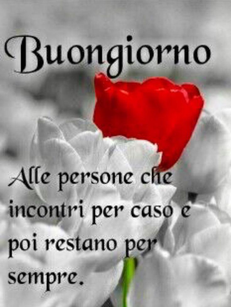 1155 best buongiorno amici images on pinterest for Top immagini buongiorno