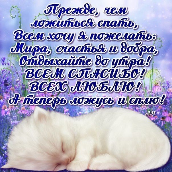 Спокойных снов картинки для друзей с пожеланиями, юбилеем