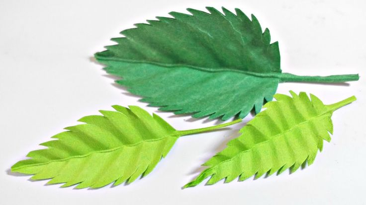 Paper leaf (Rose leaves) diy design craft making tutorial easy cutting f...