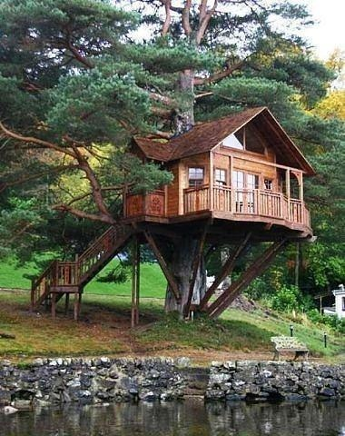 271 best Tree Houses images on Pinterest | Treehouses, The tree and Cool tree  houses