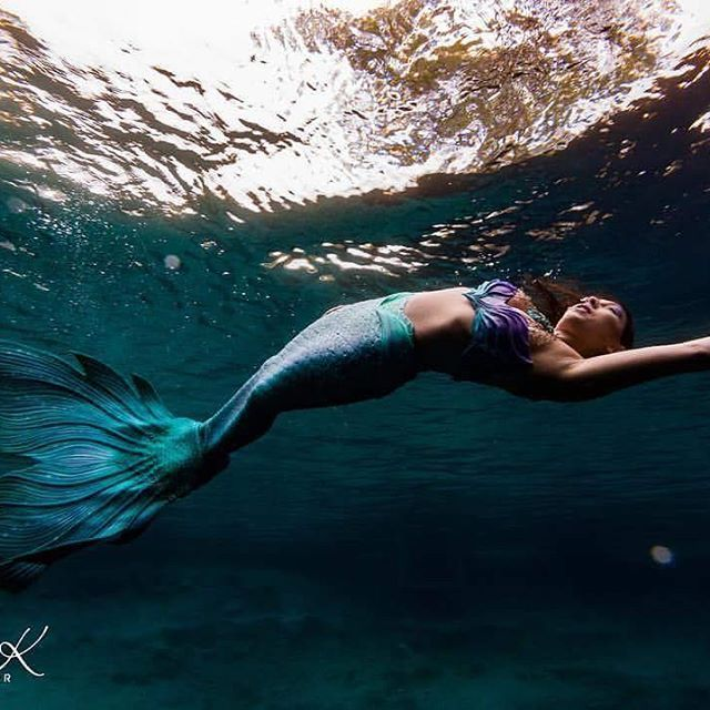 Swimmable Mermaid Tails: 192 Best Images About Finfolk Mermaid Tail On Pinterest