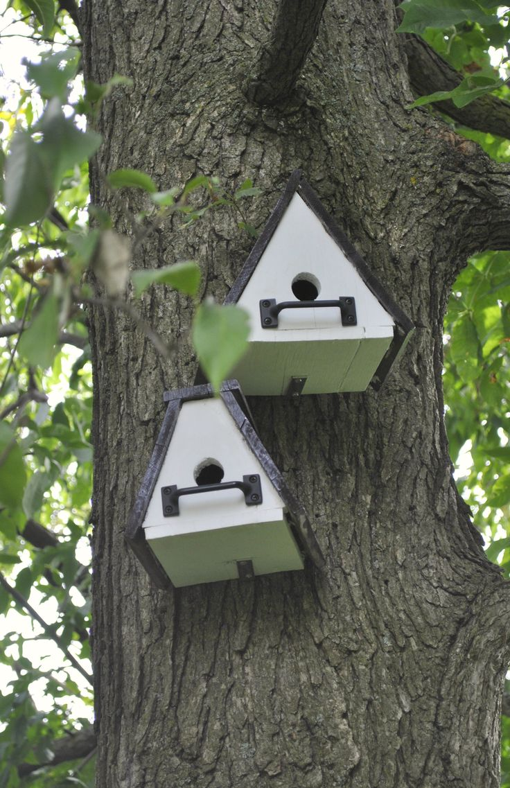 Birdhouse constructed of wood bird house design free standing bird - 468 Best Bird Houses Images On Pinterest Bird Houses Gardening And For The Birds