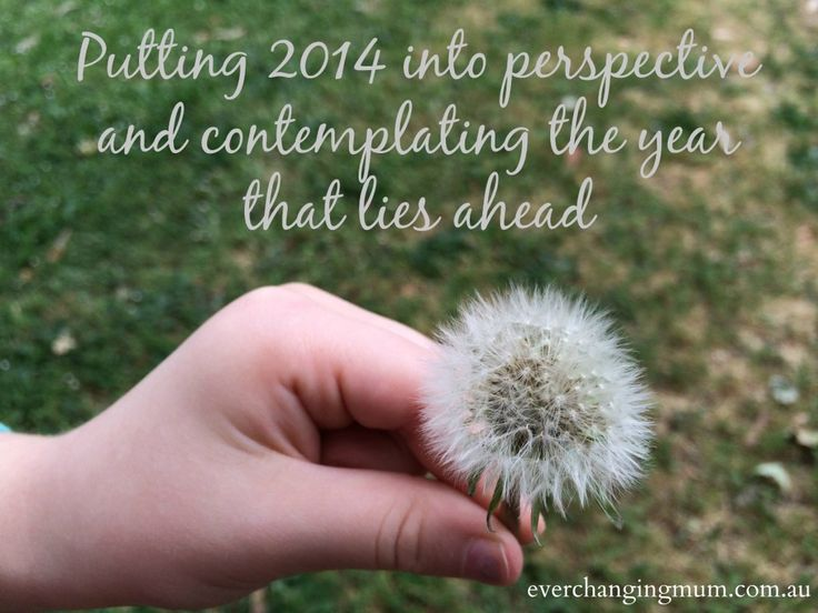 Putting 2014 into perspective and contemplating the year that lies ahead