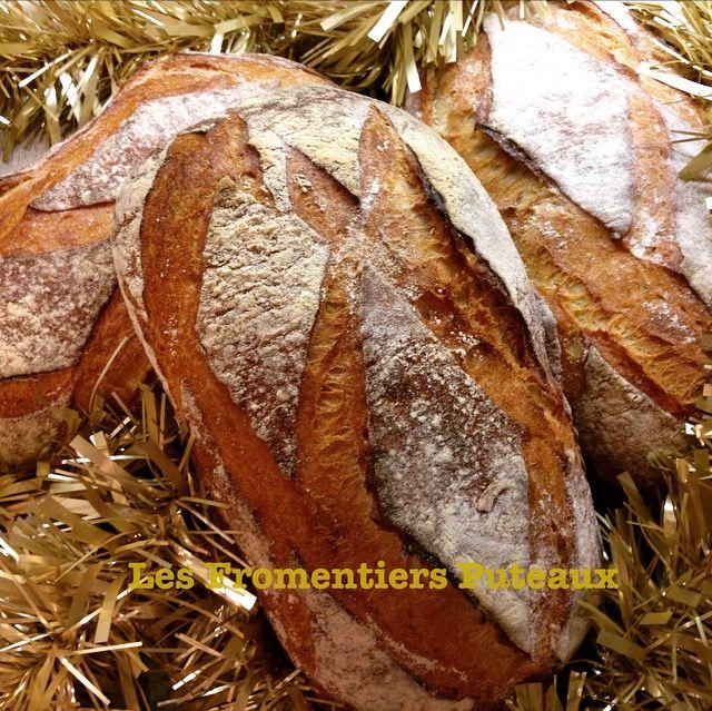Pain Gaulois des Fromentiers Puteaux, Noël 2016  Gaulois bread from Les Fromentiers Les Fromentiers Puteaux, Christmas 2016
