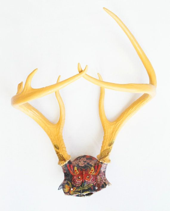 24 best Skull-inspiration images on Pinterest | Taxidermy, Antlers ...