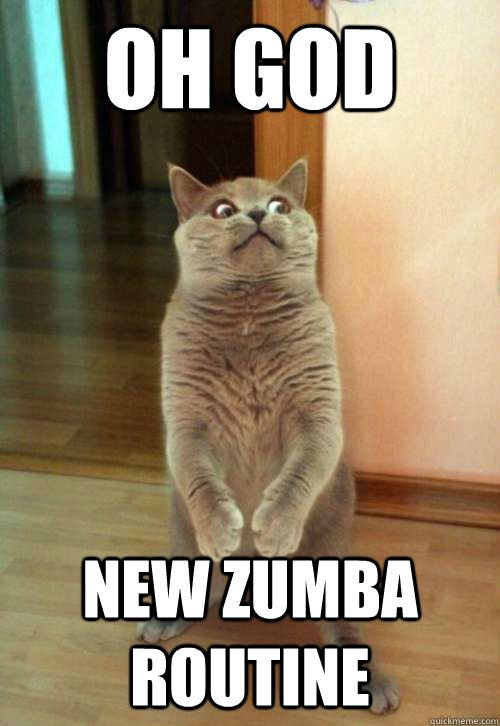 oh god new zumba routine - Horrorcat