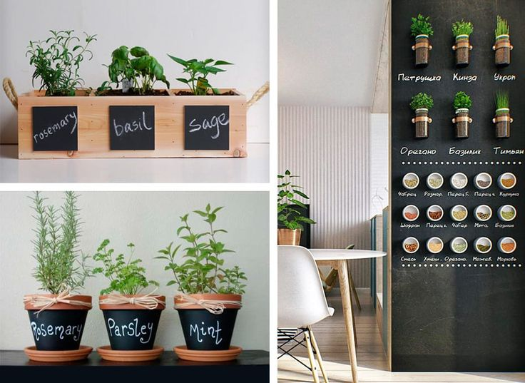 Oltre 25 fantastiche idee su pittura d 39 interni su - Erbe aromatiche in casa ...