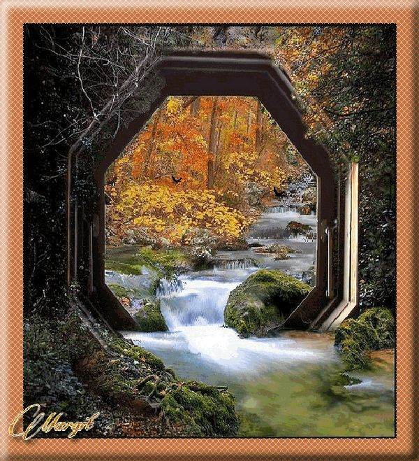suhanó patak, röpködő madarak ősszel