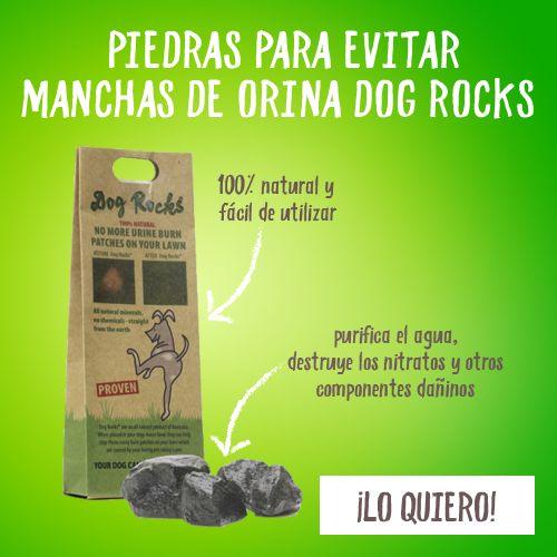 Dog Rocks piedras para evitar manchas de orina es un producto mineral completamente natural que se coloca dentro del bebedero de tu perro para que el nitrato que contiene la orina se reduzca y ésta no dañe el césped.