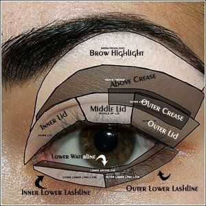Highlighting and Contouring for eyes. It's so hard without a diagram like this!
