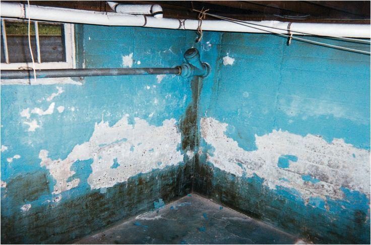 fixing a wet basement greenbuildingadvisor from Damp Basement Fix