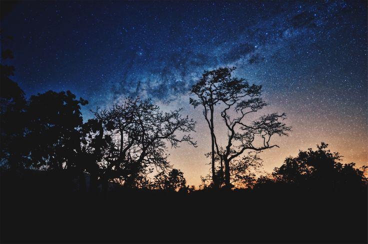 Milky Way I, by Shashank Acharya | Unsplash