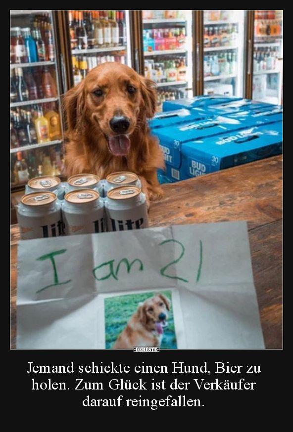 Jemand Schickte Einen Hund Bier Zu Holen Zum Gluck Ist Lustige Bilder Spruche Witze Echt Lustig Witzige Hundebilder Hunde Bilder Hund Funnies