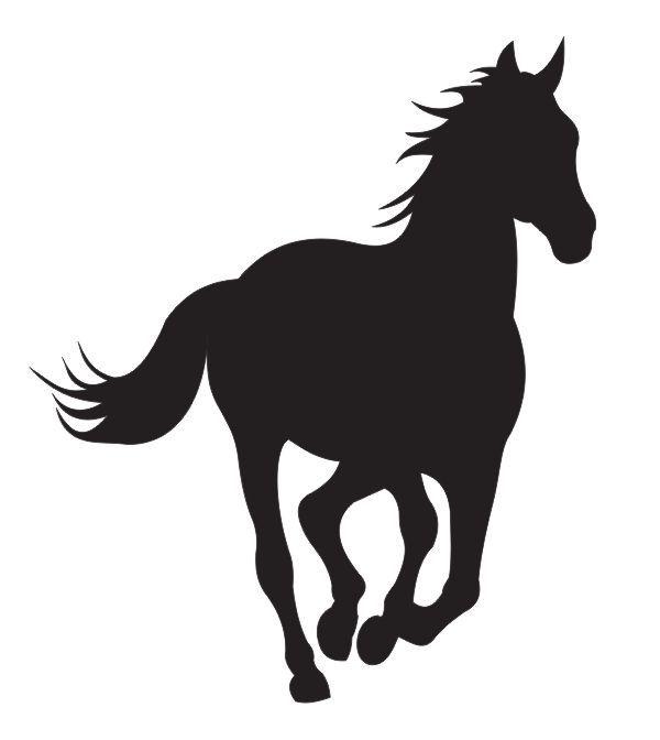 Koń 18