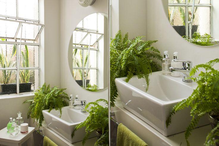 Griferia Para Baño Easy:Piletas Mini Modelos