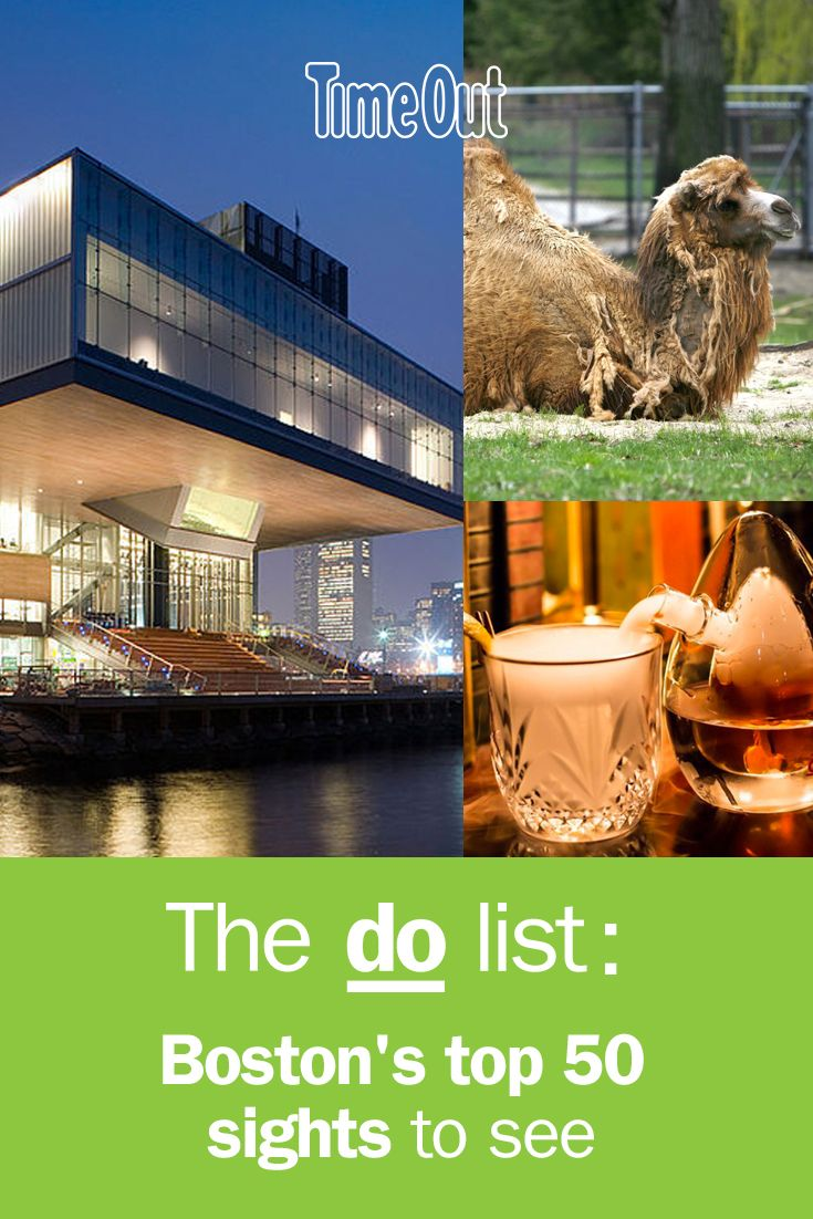 The 50 Best Things To Do In Boston Boston Things To Do New York