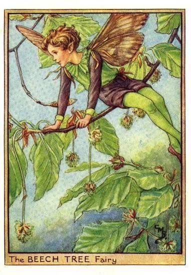 Cicely Mary Barker: The Beech Tree Fairy