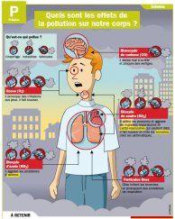 Quels sont les effets de la pollution sur notre corps ? - Mon Quotidien, le seul site d'information quotidienne pour les 10 - 14 ans !