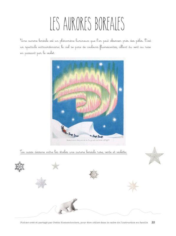 aurores boréales et autres activités sur le pôle Nord pour la maternelle.