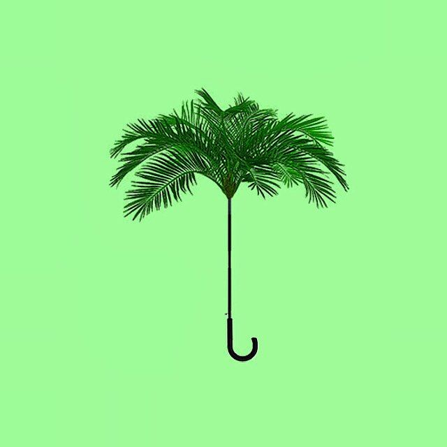Palm umbrella