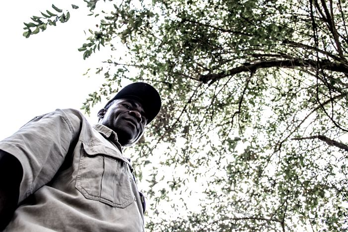 Kenneth Jazi is mad about indigenous plants. Much of his knowledge comes from month-long expeditions into the bushveld with nothing but a tent and a book (bible) on the indigenous trees and plants of Southern Africa. You are welcome to leave questions for Kenneth in the comments section below. Photograph by Ryan James