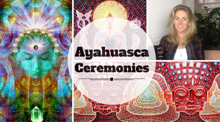 Ayahuasca in the Netherlands