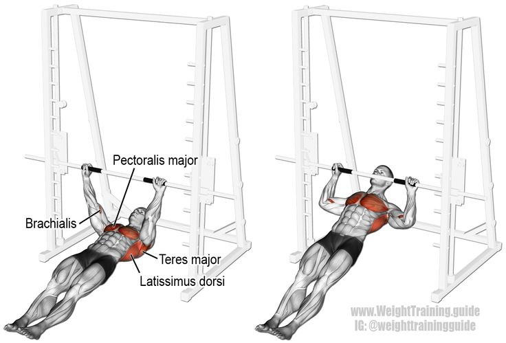 Inverted row. Main muscles worked: Latissimus Dorsi, Middle and Lower Trapezii, Rhomboids, Teres Major, Teres Minor, Infraspinatus, Posterior Deltoid, Pectoralis Major, Brachialis, and Brachioradialis. Also known as the fat man pull-up, the body row, and