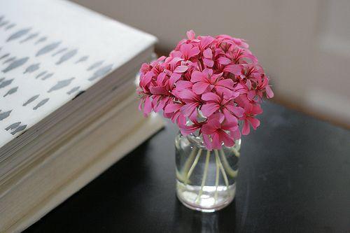 ¡Qué simple, qué bonito!: Minis Dog Qu, Flowers Arrangements, Minis Jars