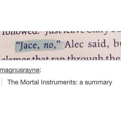 The Mortal Instruments: A Summary... This is pretty much the only thing I said while reading those books haha