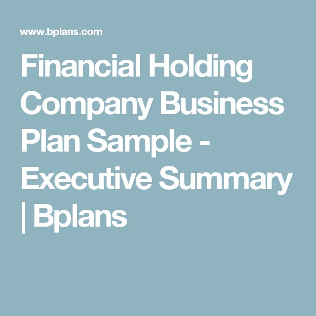 Financial Holding Company Business Plan Sample