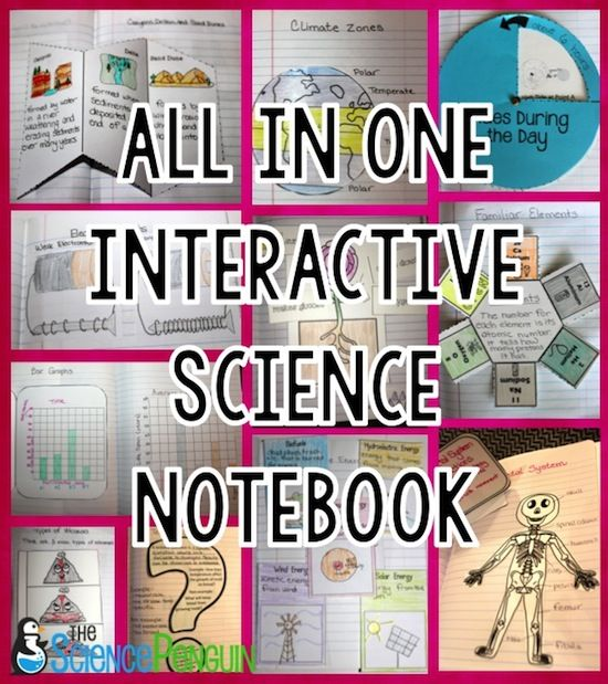 Lots of ways to teach science vocabulary and make it stick!