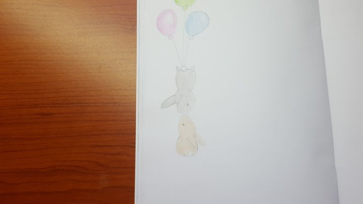 Rabbits 😍😍