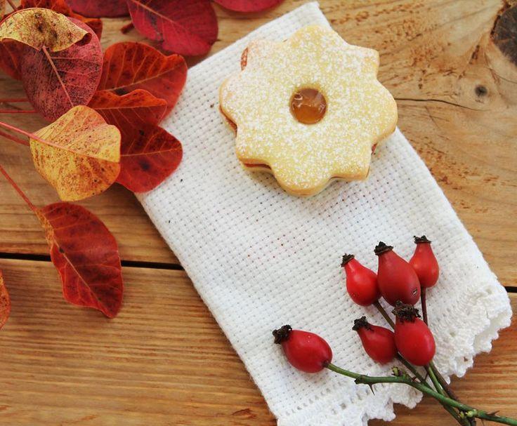 """Biscotti al """"miele"""" di rosa canina, Il Dolce Carso"""