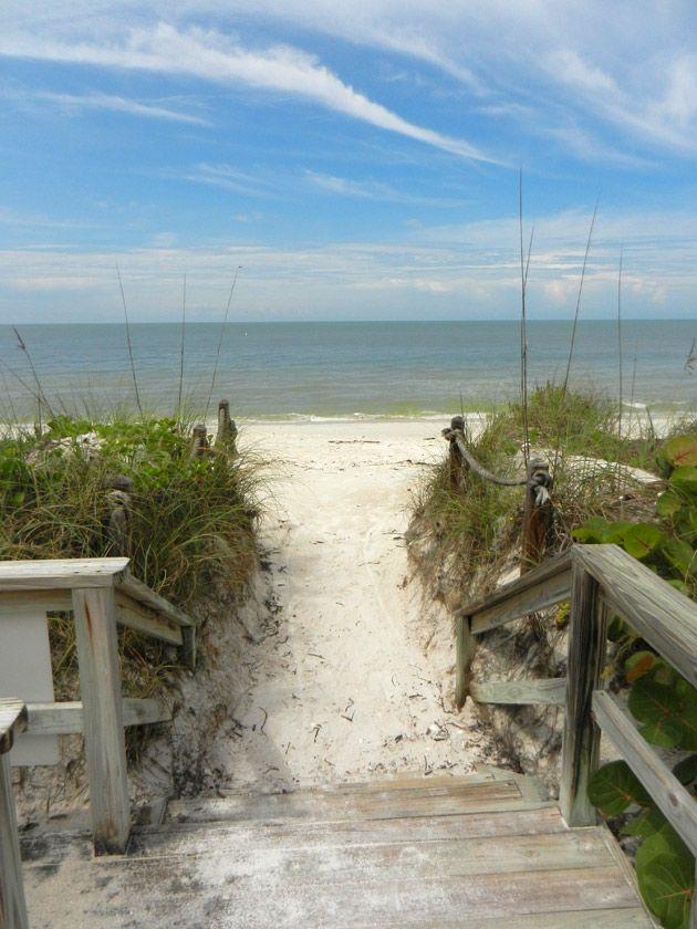 Walk way to paradise. Barefoot Beach Bonita Springs, FL.....love this beach. I live here
