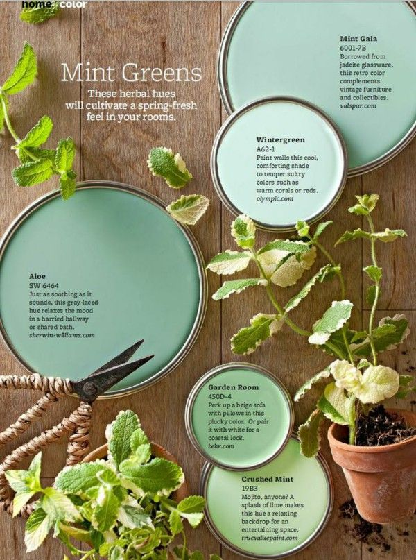 65 best paint colors images on pinterest color palettes Very light mint green paint
