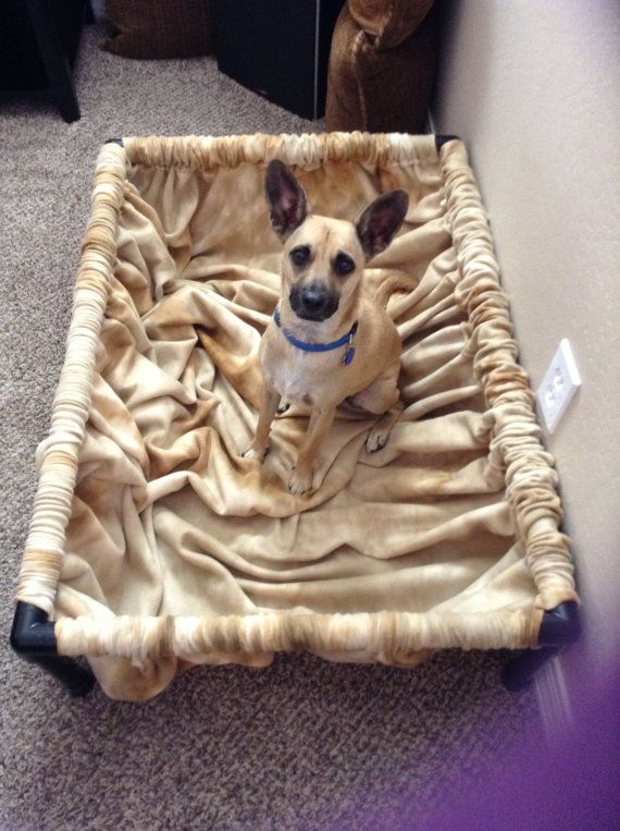 A dog bed for her to dig in! I bet I could make this with PVC and fabric!
