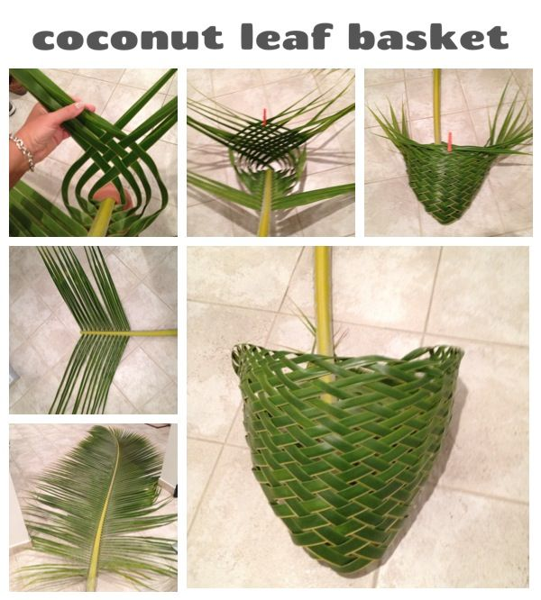 Basket Weaving With Leaves : Coconut leaf basket diy beach craft graduation lei