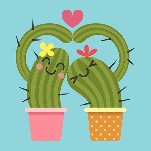 loving couple of cactus making heart shape