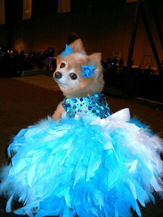 Dog Dress Wedding Turquoise Bling Satin Feather Harness Aqua Blue