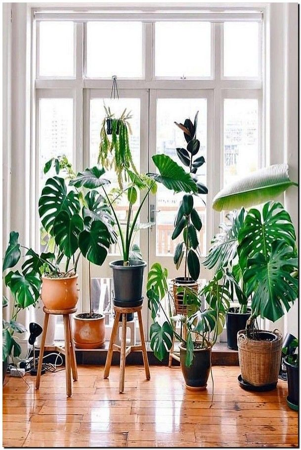 50 Plant Stand Design Ideas For Indoor Houseplants 41 Easy House