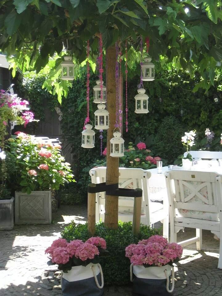 Lanterns hung from a tree and potted roses and hydrangeas next to a white washed table.