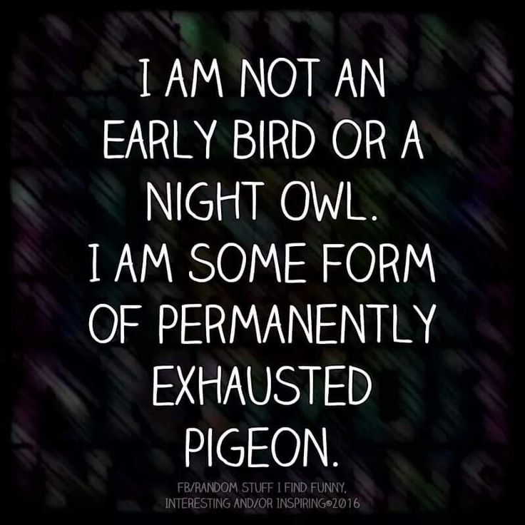Exhausted pigeon lol