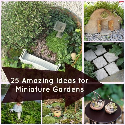 25 Perfect Accessories for Miniature Gardens - cute board with lots of ideas for fairy gardens !