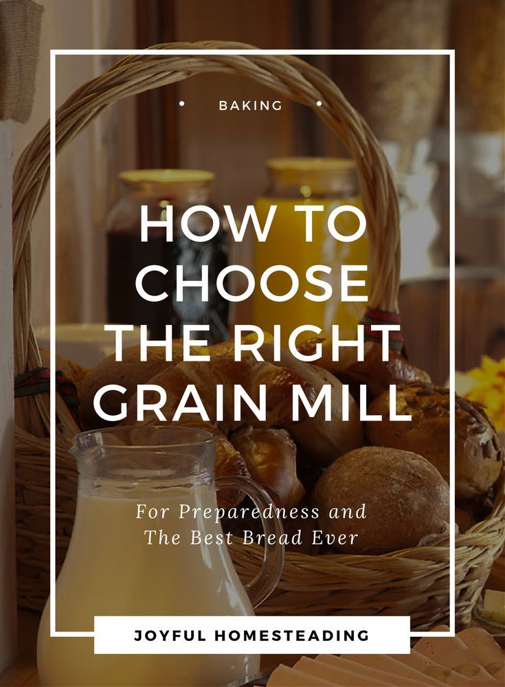The grain mill is an essential part of the self-reliant kitchen.  Find the right grain mill for you.