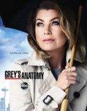 Grey's Anatomy Saison 12