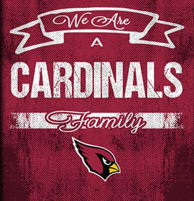 Arizona Cardinals Family 2k16 @ArizonaLadyBirds