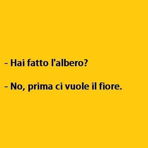 Seems legit. (By RaF9791) #tmlplanet #albero #natale