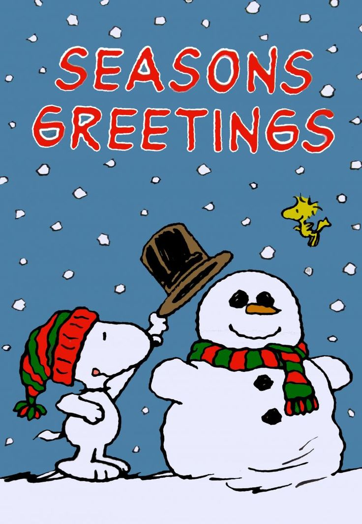 Image result for peanuts winter pictures